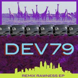 dev79 4