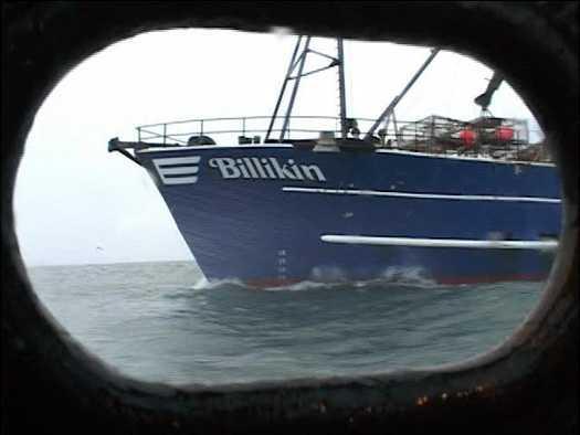 Boats Deadliest Reports