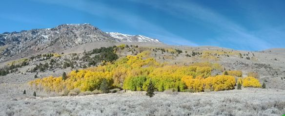June Lake Loop, Oct. 2012. Image by The Jab.