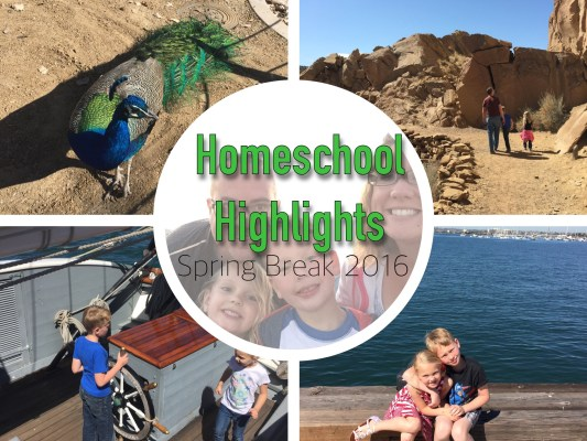 Homeschool highlights spring break