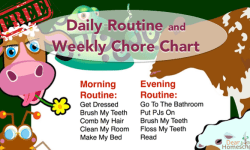 daily routine and weekly chores