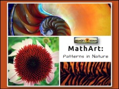 MathArt-Patterns-in-Nature-Cover-720px