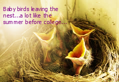 baby birds leaving the nest, a lot like the summer before college