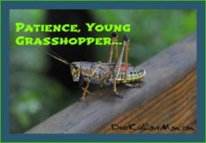 Patience Young grasshopper DearKidLoveMom.com