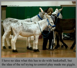 Donkeys on the Court-- March Madness-- DearKidLoveMom.com