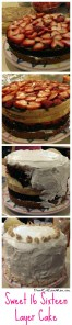 Making a Sweet 16 Sixteen Layer Cake DearKidLoveMom.com