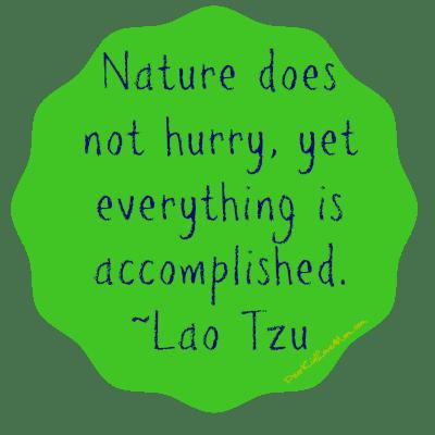 Nature does not hurry, yet everything is accomplished Lao Tzu DearKidLoveMom.com