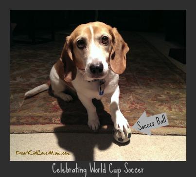 Celebrating World Cup Soccer Puppy-style DearKidLoveMom.com