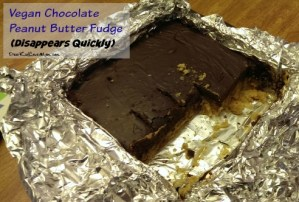Vegan Chocolate Peanut Butter Fudge. Delicious. Does not last long! DearKidLoveMom.com
