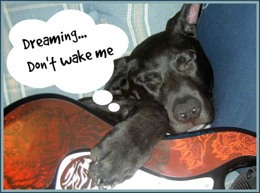 Dreaming...Don't wake me...it's a good one. DearKidLoveMom.com