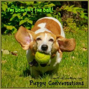 Puppy running with the ball. Puppy Conversations #PuppyConversations DearKidLoveMom.com