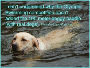 I can't understand why the Olympic Committee hasn't added the 100 meter doggy paddle (with real dogs) DearKidLoveMom.com