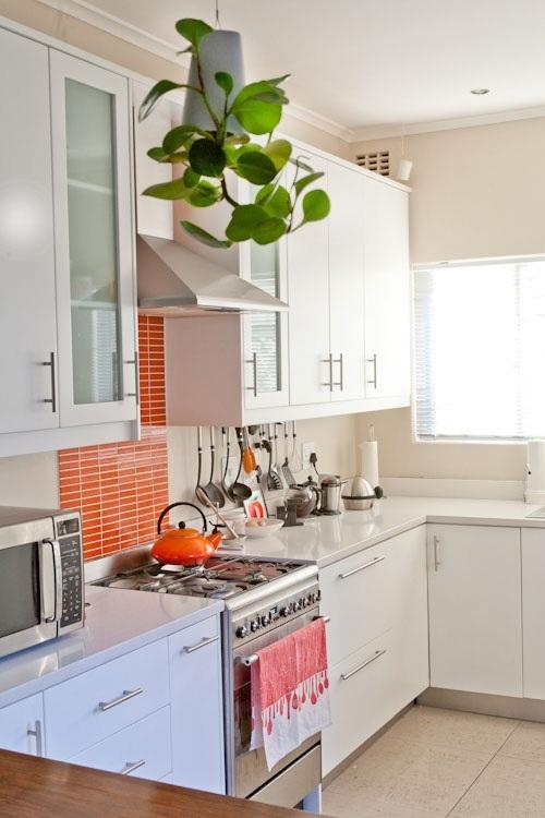 Orange Kuche Energieschub Villawebinfo   Super Coolen Kuchen Mobalpa