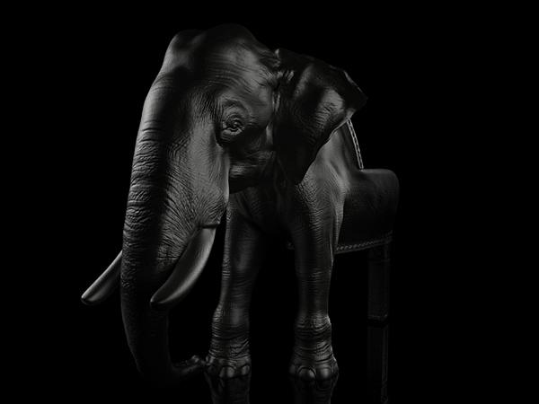 elephant designer stuhl riera | hwsc.us - Asymmetrischer Stuhl Casamania
