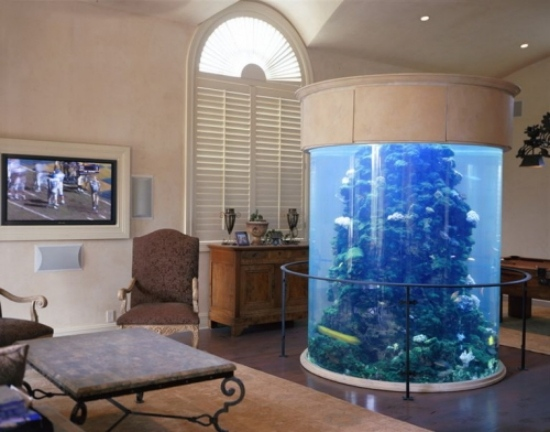 ... Das Aquarium Einrichten Als Dekorationselement Im Hausinterieur   Aquarium  Wohnzimmer ...