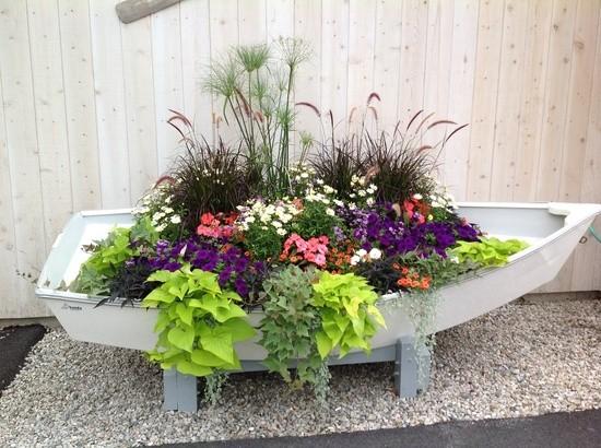 Kreative Gartenidee Blumen Attraktiv Pflanzen Und