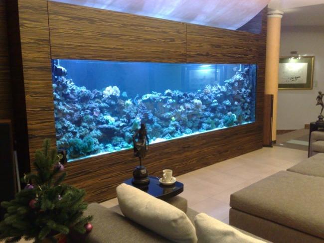 aquarium-eingebaut-schrank-wohnzimmer-blae-lampenjpg (JPEG-Grafik - whirlpool im wohnzimmer