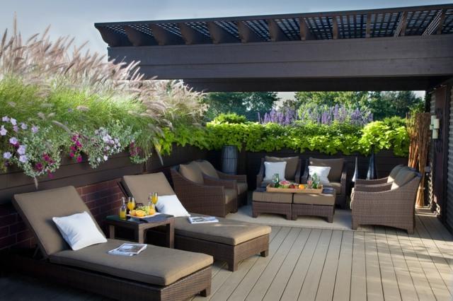 Balkon Sichtschutz Pflanzen Winterfest ~ CARPROLA for  - tipps sichtschutz garten privatsphare