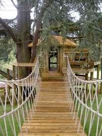 Baumhaus bauen  einen Ort zum Spielen und zur Entspannung