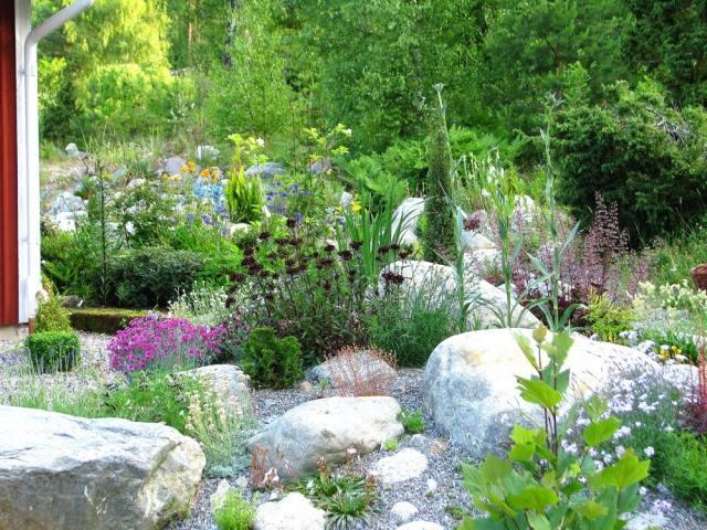 Steingarten anlegen - 116 Gestaltungsideen und Tipps - gartengestaltung steingarten