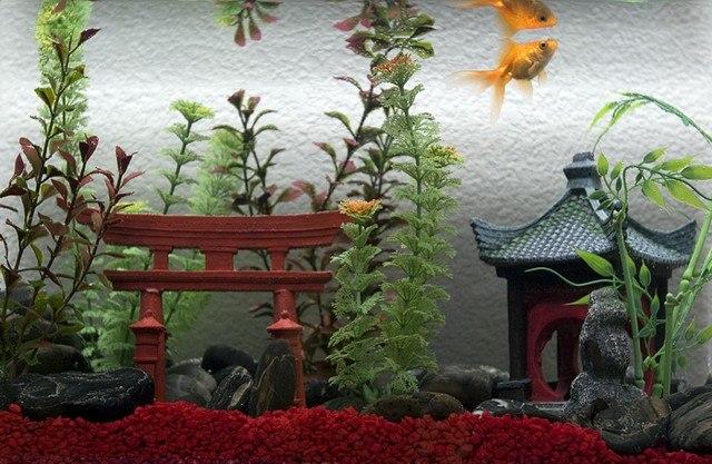 Aquarium Im Schlafzimmer Á… Modernes Haus In Minecraft Bauen Minecraft Bauideen De