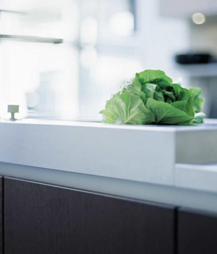 Mini Garten In Der Küche   Ein Hit In Der Innenarchitektur   Mini Garten In