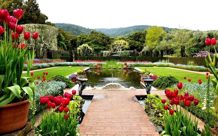 Ein schöner Garten mit 10 Gartentipps und Hausmittel gegen Plagen - schoner garten bilder