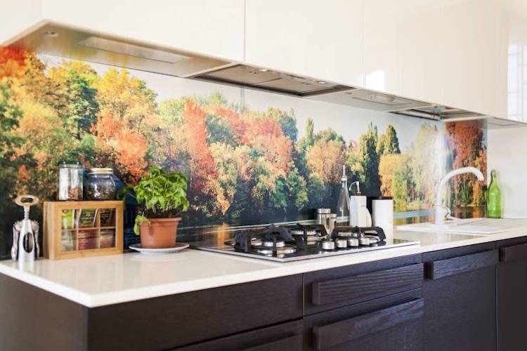 wandpaneele küche - ideen & bilder | houzz. anwendungen und idee ... - Wandpaneele Für Küche