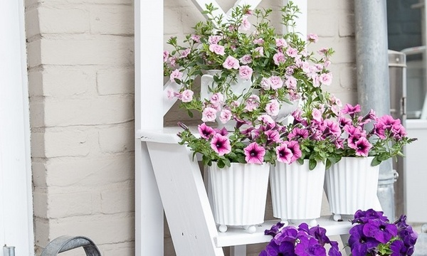 Diy Flower Stand Turn An Old Wooden Ladder Into A Flower
