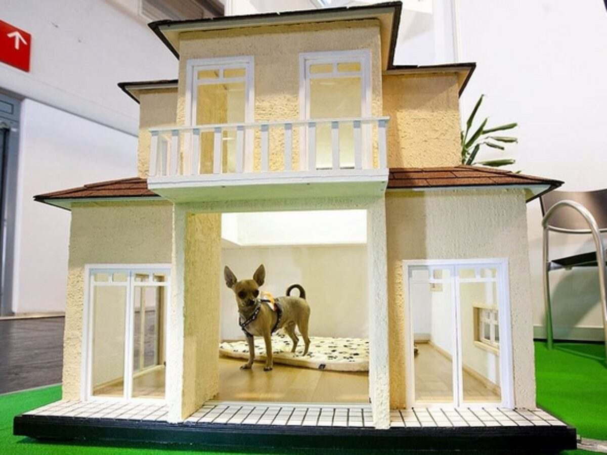 Adorable Dog House Designs For The Comfortable Living Of Our Pets