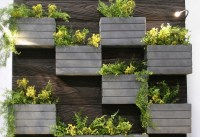 Creative living wall planter ideas  design your own ...
