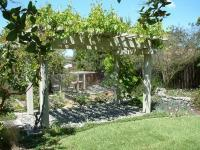 30 fascinating grape arbor ideas  the perfect patio decor