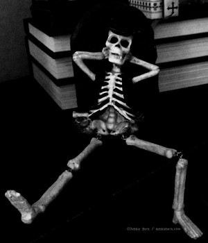 Books-Skeleton-DB-2015-2