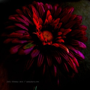 Purple-Flower-DB-2015-2