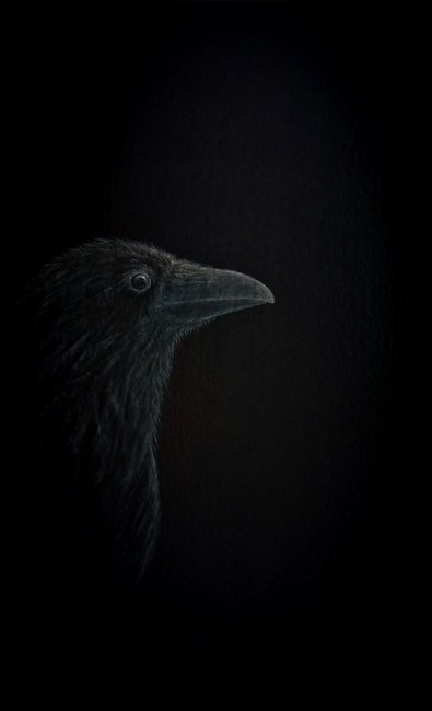 Waiting in Silence- Raven painting - Psalm 62