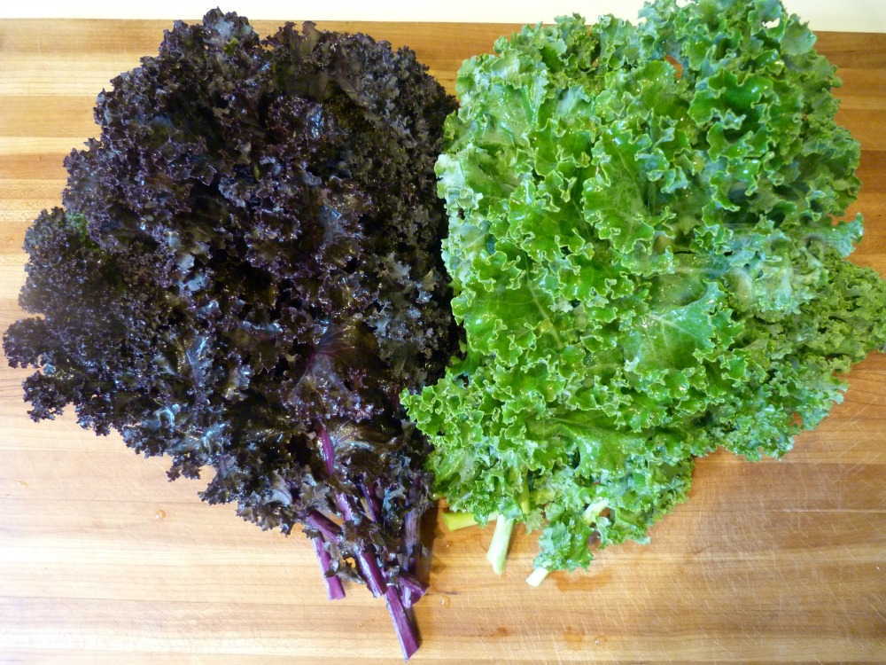 Curly Kale:  Purple and Green