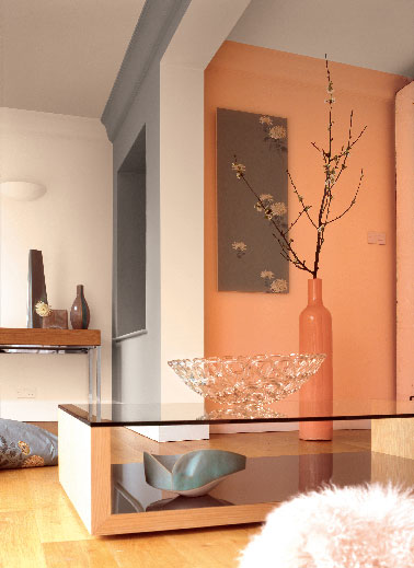 Astral Decoration Peinture Astral Dans Salon Moderne Couleur Orange Et Gris