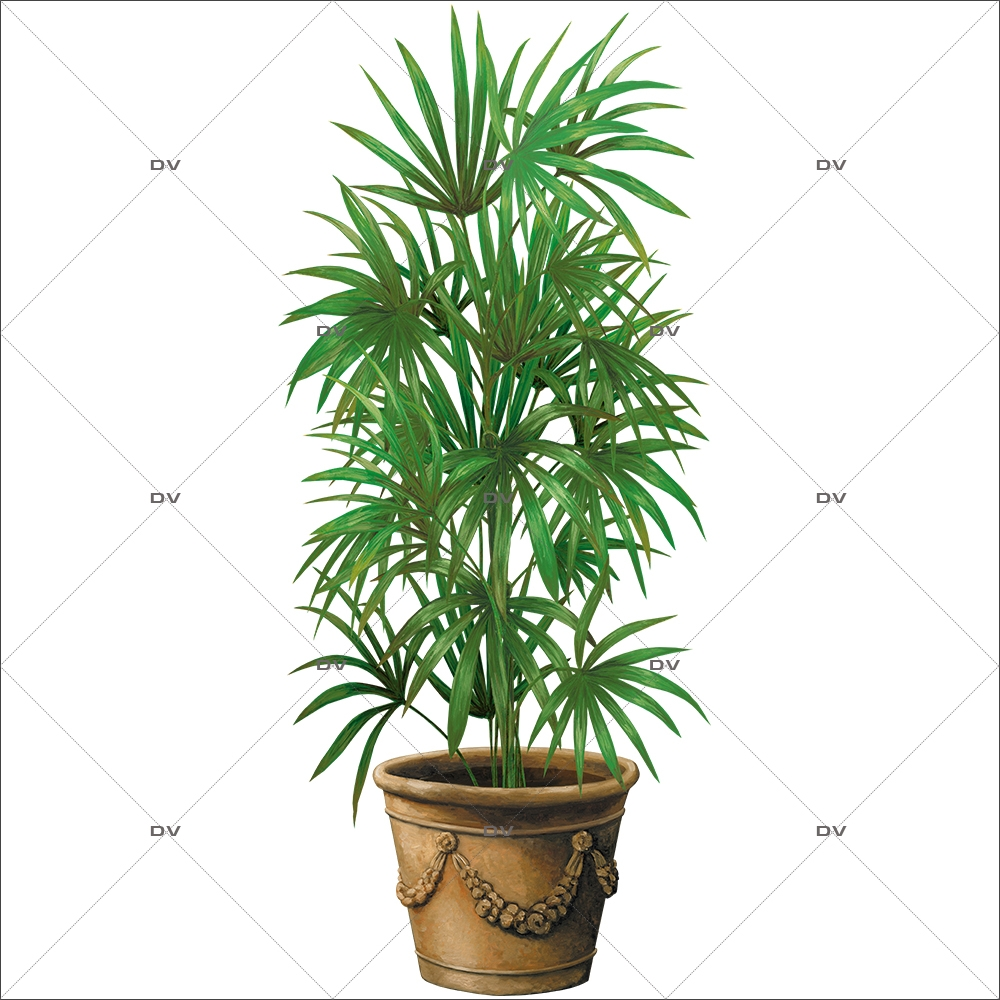 Yucca Plante Interieur Ds126 Sticker Pot Kentia Deco Vitres Sticker Mural