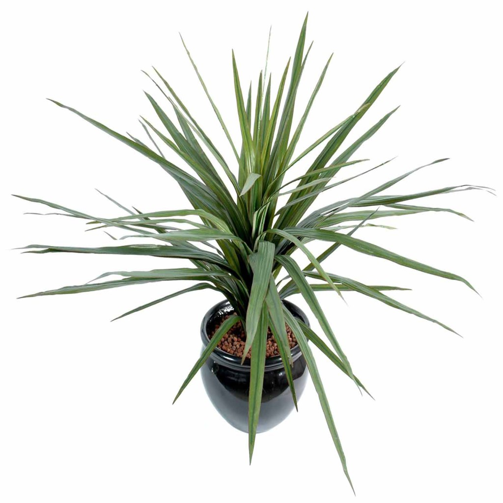 Grandes Plantes Artificielles Dracena Artificiel Marginata Decobac