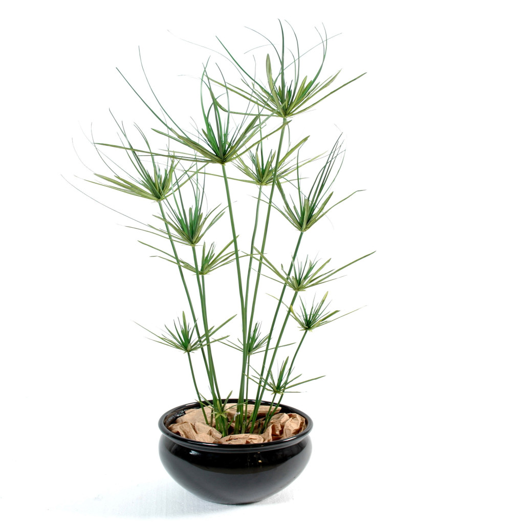 Grandes Plantes Artificielles Papyrus Artificiel Decobac