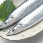 【料理】秋はやっぱり秋刀魚!生さんまと塩さんまの違い?食べ方は?