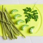 ゴーヤ料理の作り方簡単人気レシピ!苦味の取り方・消す料理は?