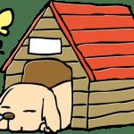 【ペット】愛犬のためにも失敗したくない!犬の小屋を選ぶコツとは!