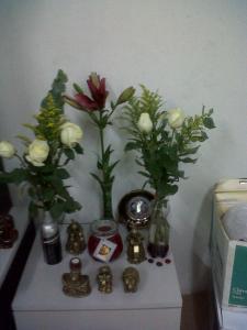 florero de envase desechable