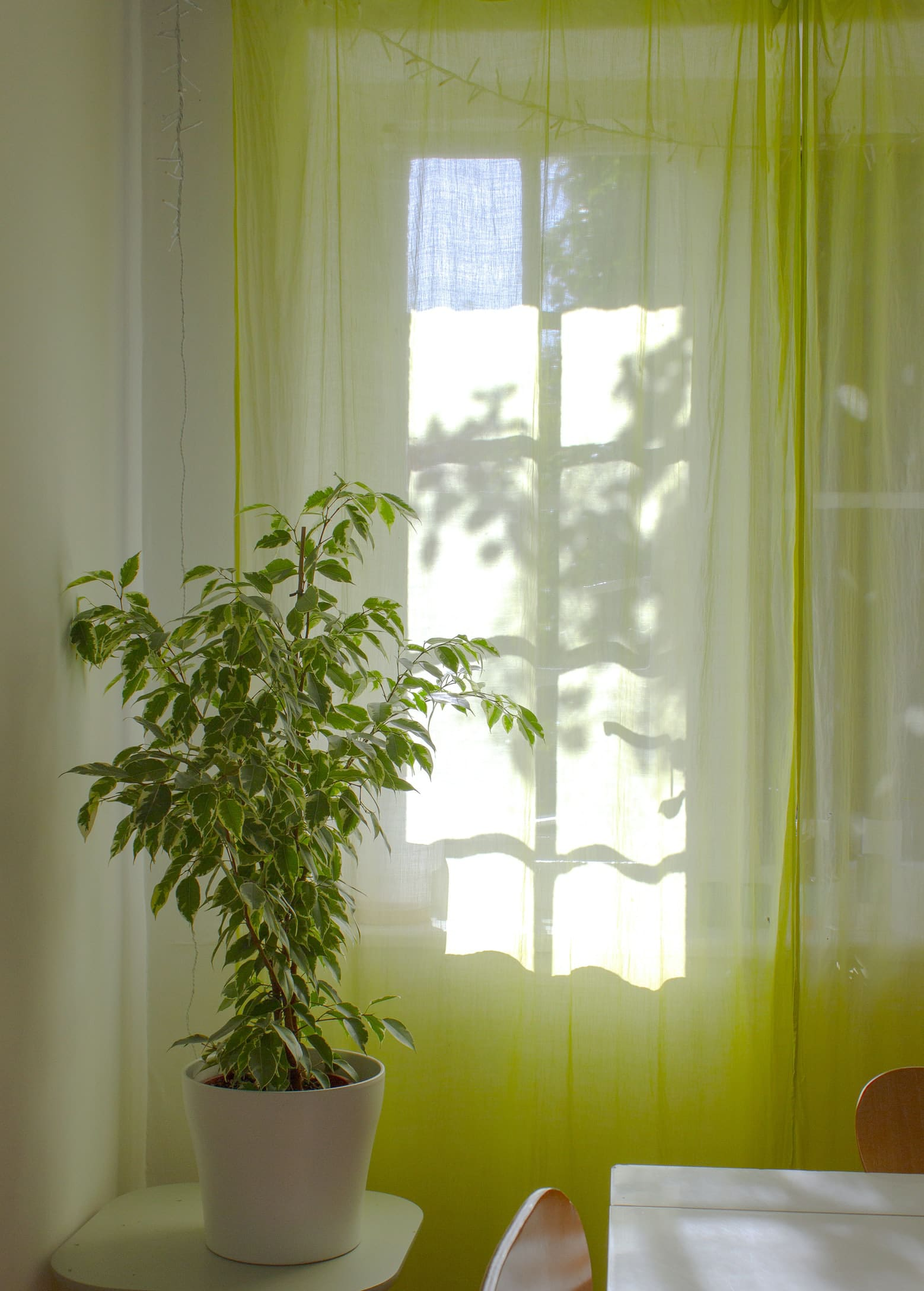 What Color Curtains Go With Green Walls 18 Ideas