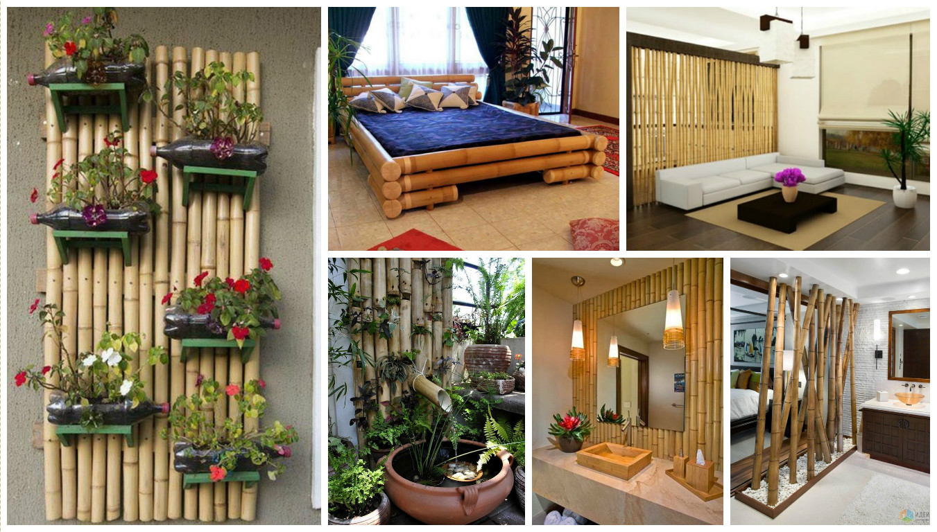 House Decoration Images Bamboo Tree Decorations For Home Decor
