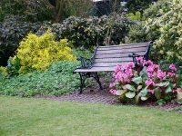 Easy Garden Dcor Ideas  Decoration Ideas