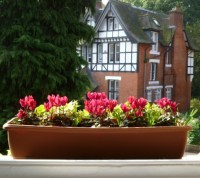window box ideas | Decorator's Notebook blog