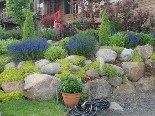 Rock Garden Inspiration Ideas