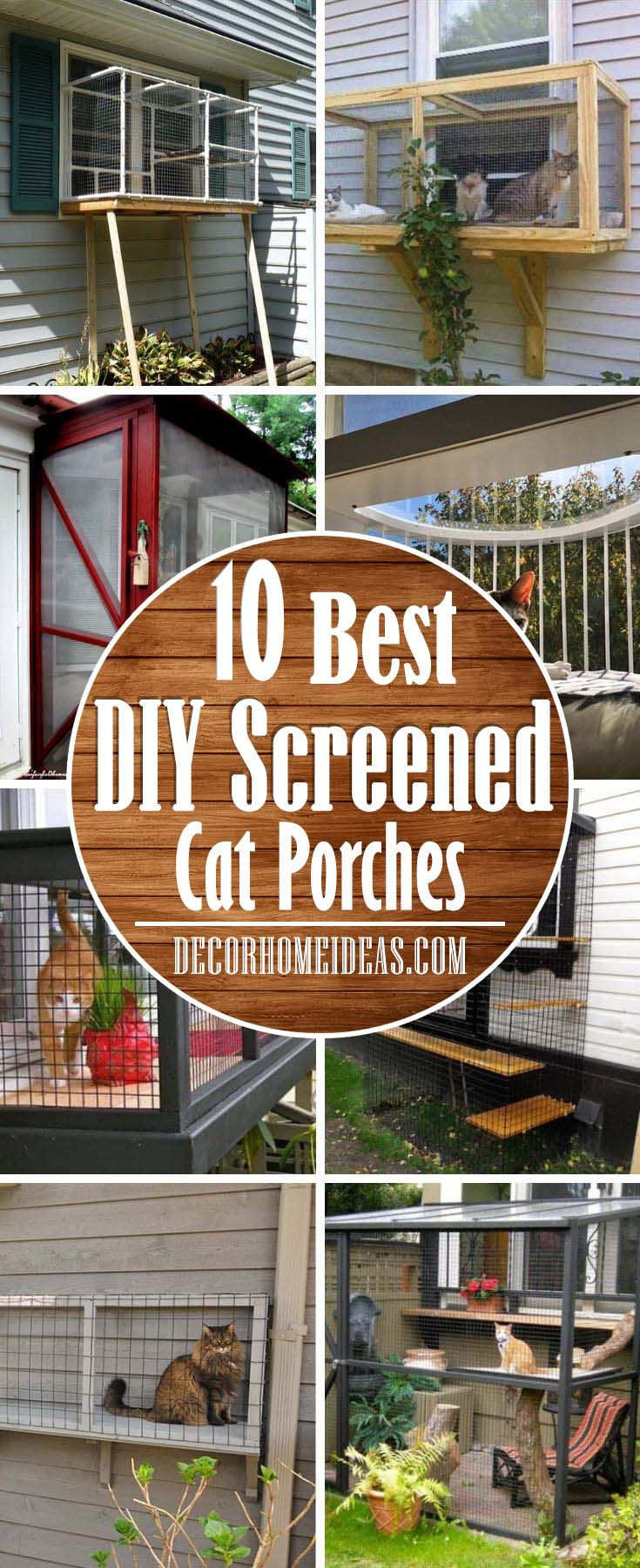 Best Diy Screened Cat Porches To Keep Your Kitty Safe Decor Home Ideas